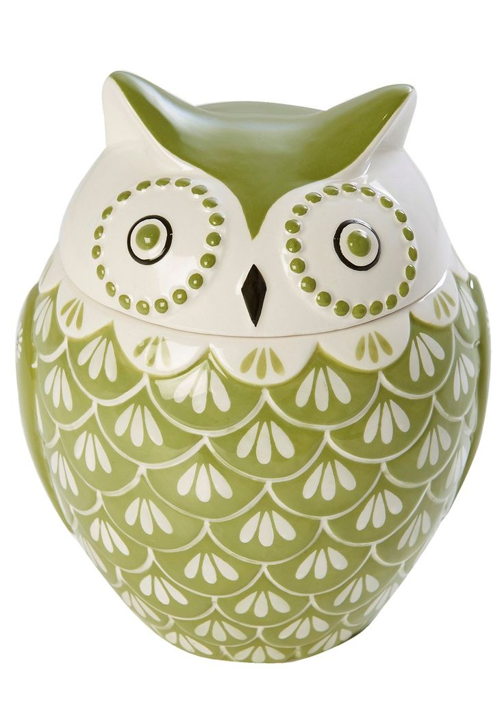Hand Painted Owl Canister Pinned by www.myowlbarn.com