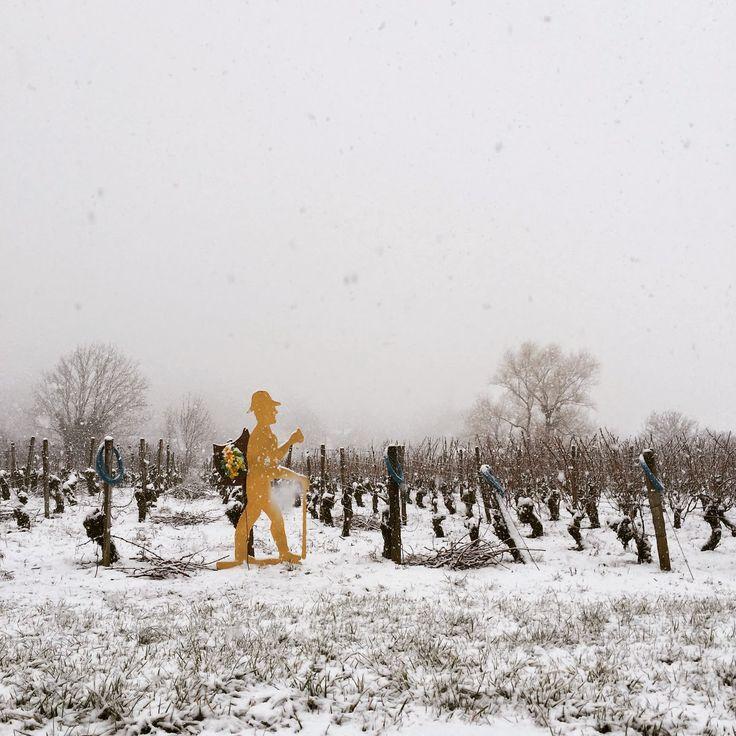 La 19ème Percée du Vin Jaune 2015 à Montigny les Arsures : 40 000 personnes ont célébré ledit vin sous la neige !  http://spiritueuxmagazine.blogspot.fr/2014/02/percee-du-vin-jaune-2014-elle-venait.html