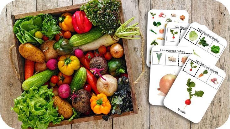 Jeu de cartes : familles de légumes
