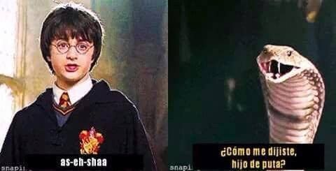 Lo bueno es que al principio nadie le entendió. | 18 Memes de Harry Potter tan chistosos que hasta harán reír a Voldemort