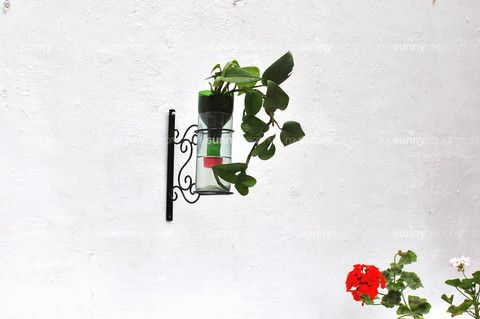 Wrought Iron wall mounted bottle holder with upcycled glass pot – The mysunnybalcony e-store