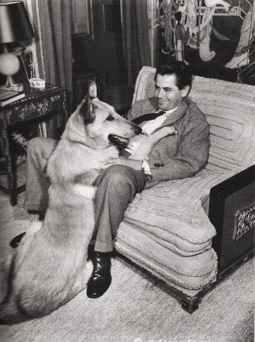 Glenn Ford relaxing with Bill, his German Shepherd, June 1948 (that's a BIG Shepherd)