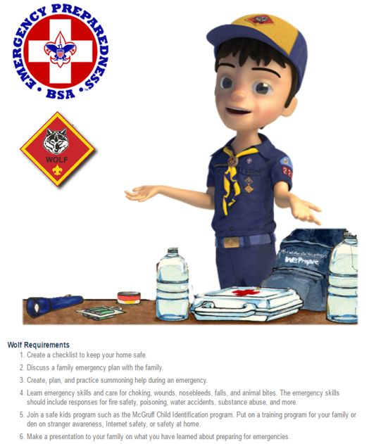 This is a fun Award for Cub Scouts and their Leaders. Click on Pics below for Printable PDF requirements flyers.   Did you know Leaders can Earn this Award along with the Cubs they teach? Clic…