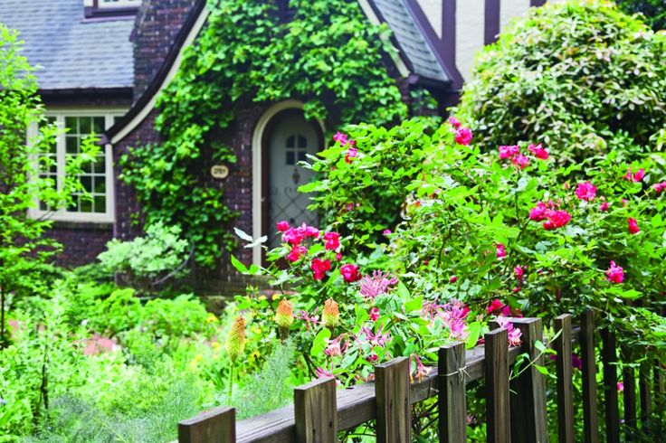 Use native US plants such as honeysuckle, pyracantha, climbing hydrangea, and Confederate jasmine for creating an English cottage garden in the South.
