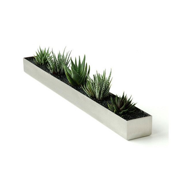 long skinny silver planter with cactus gus modern fruit trough modern indoor pots and planters by design public