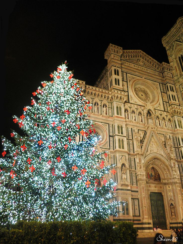 Natale al a Santa Maria del Fiore  #christmas #natale #albero #church #florence #firenze