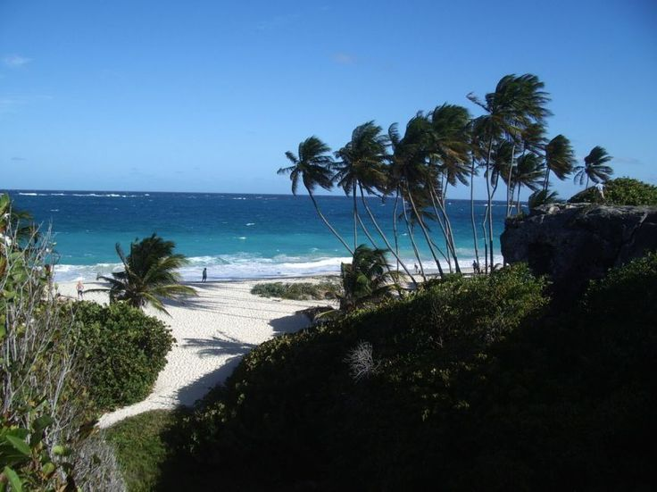 50 Best Beautiful Barbados Images On Pinterest: 32 Best Beautiful Barbados Vacation Ideas Images On