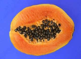 Papaya Facial Treatments for Healthy Skin | Superfood Profiles