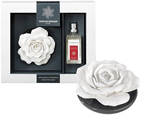 Parfum Berger Ceramic Fragrance Rose On Tray 106051 Orang... http://www.amazon.com/dp/B01FT8AQLA/ref=cm_sw_r_pi_dp_MSKtxb1ST7B4P