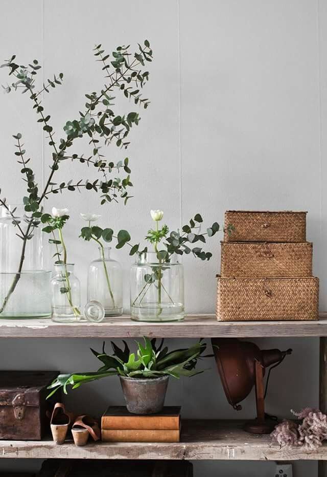Eco Salon Inspiration!