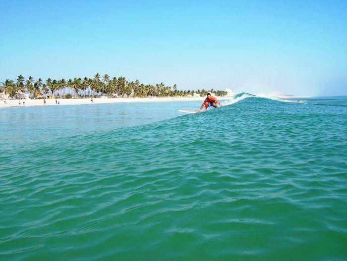 #OmanInPictures | Surfing in Salalah. via Salalah Tour Oman. see on Fb https://www.facebook.com/SinbadsOmanPocketGuide #Oman #surfing #TravelToOman #MyOMAN #Sinbad #Travel