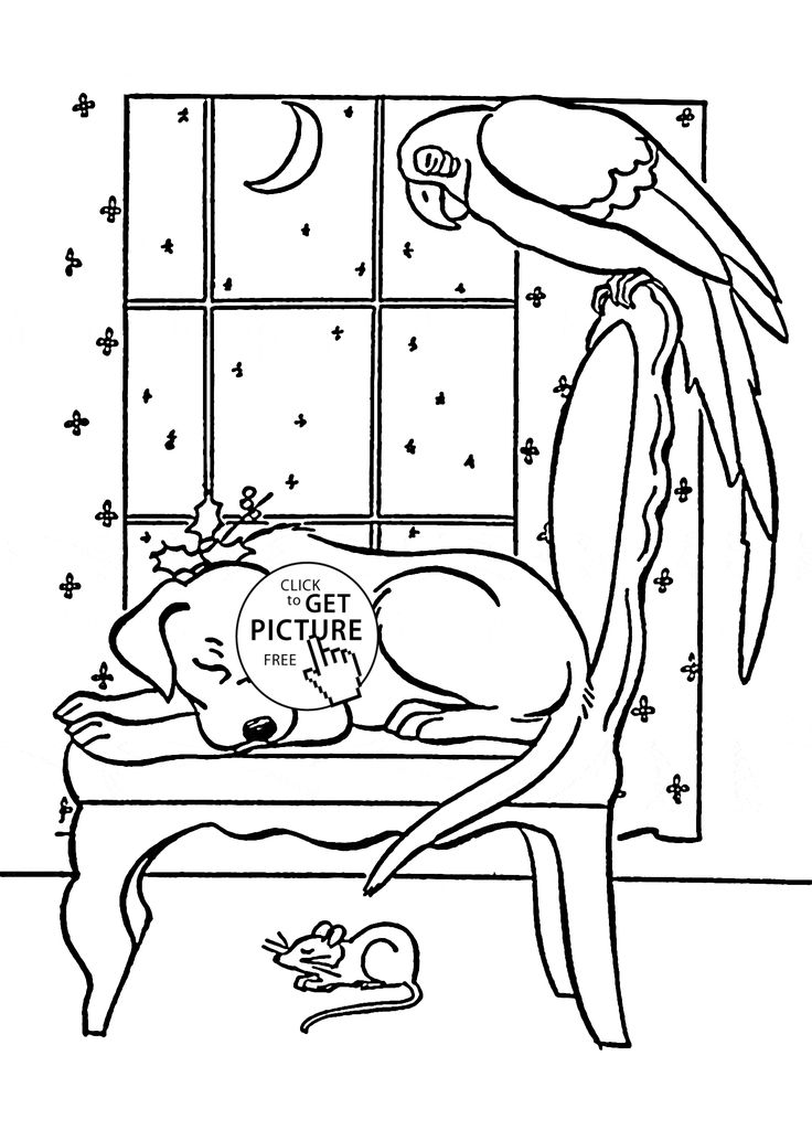 Coloring Pages Of Sleeping Animals : Best animals coloring pages images on pinterest