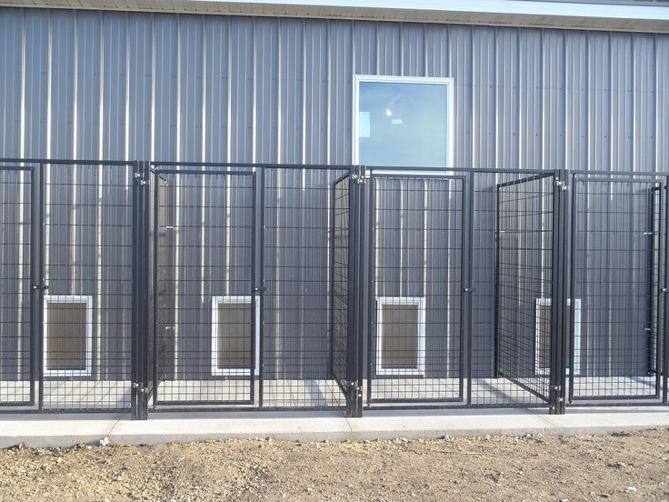 Dog boarding kennel lobby indoor outdoor kennels urban for Indoor outdoor dog kennel design