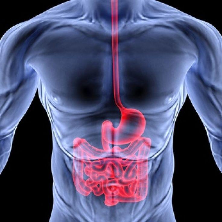 Scoperta la causa del Morbo di Crohn