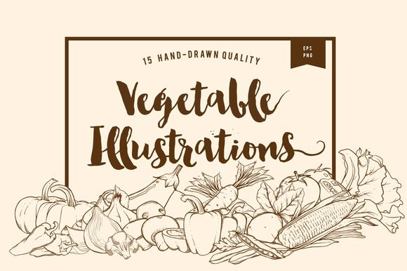 15 Handdrawn Vegetable Illustrations by dreamwaves on @creativemarket
