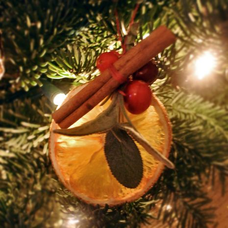 DIY Christmas Ornaments- tips on How to make dried orange slices for holiday arrangements... make ornaments with orange slices, cinnamon sticks, and berries or simple package orange slices for a variety of uses.. include tag with ideas... also use blood oranges for variety