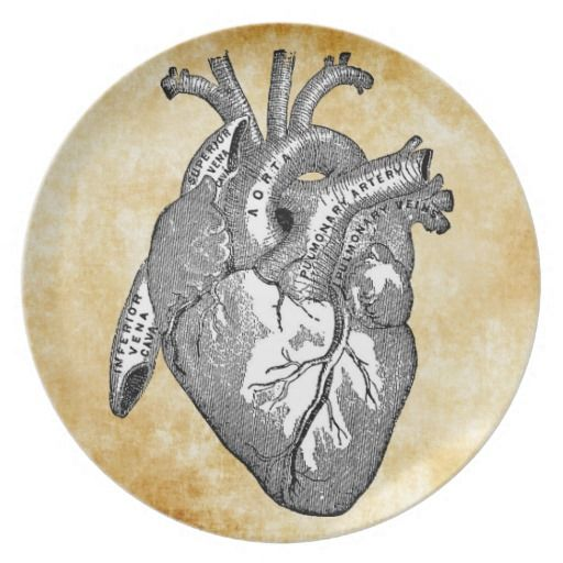 Vintage Herzanatomie Flacher Teller