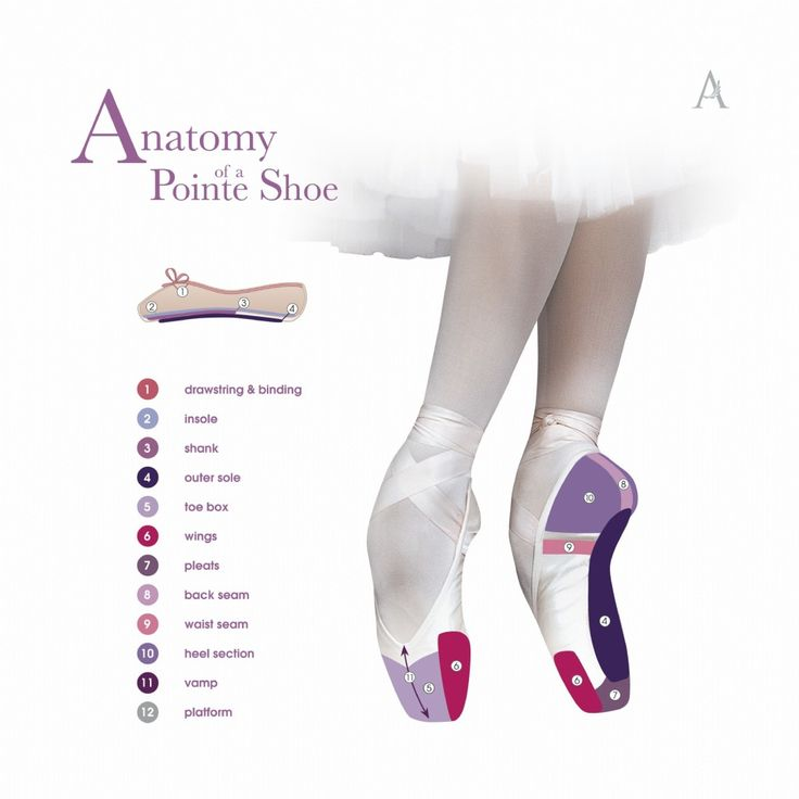This diagram from Russian Pointe illustrates pointe shoe anatomy, including but not limited to: shank, vamp, platform, toe box, wings, pleats and insole.
