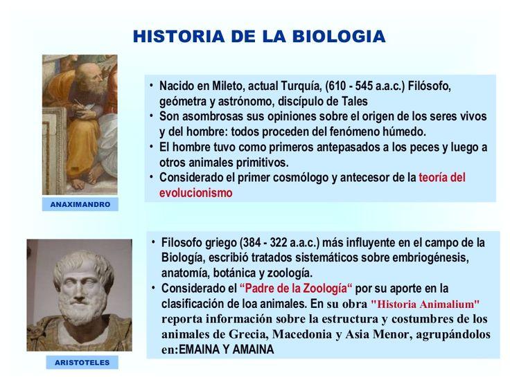 HISTORIA DE LA BIOLOGIA  ARISTOTELES  • Filosofo griego (384 - 322 a.a.c.) más influyente en el campo de la  Biología, escrib...
