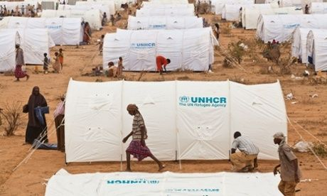 Climate of fear in Dadaab refugee camp leads many to consider repatriation.