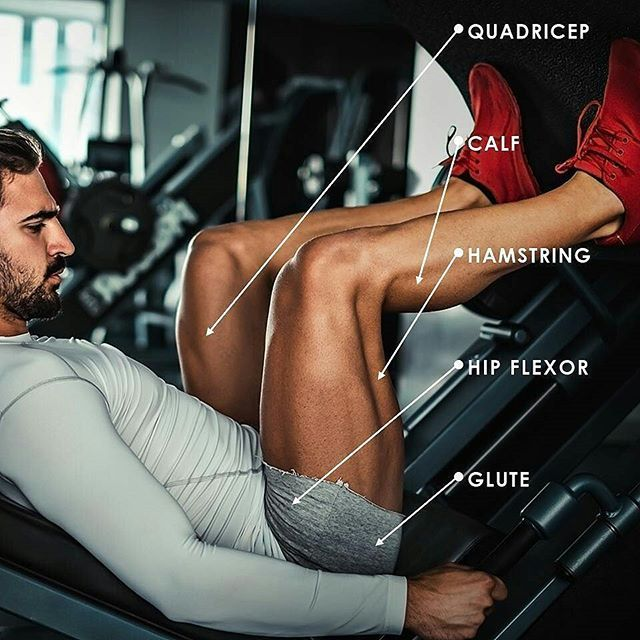 ・ Discover what muscles you're working, or need to work, on leg day! What is your favorite lower-body exercise? • • • #snapfitness #snapnation #snapnation247 #247 #workoutmotivation #legday #workout #fitstagram #fitspiration #fitness #fittip #infographic #legworkout #snapfitnessscarborough