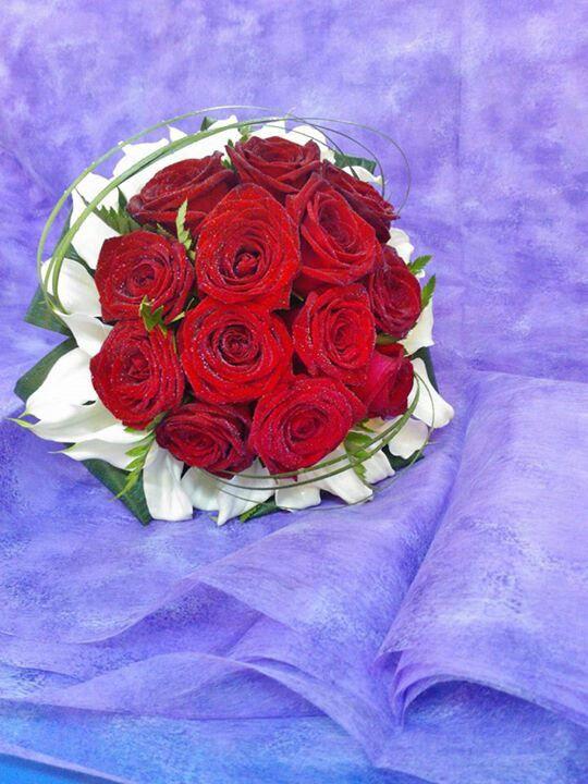 Rose rosse e calles