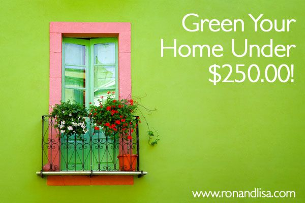 Increase the health of your home on a tight budget and discover 6 mega helpful ways to go greener