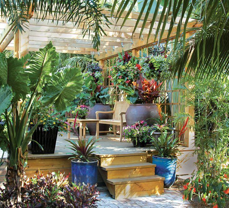 Kitchen Garden Jupiters: 161 Best South Florida Landscaping Images On Pinterest
