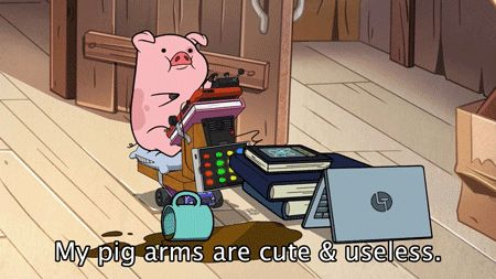 Friendly reminder that Neil deGrasse Tyson once voiced a pig - Gravity Falls