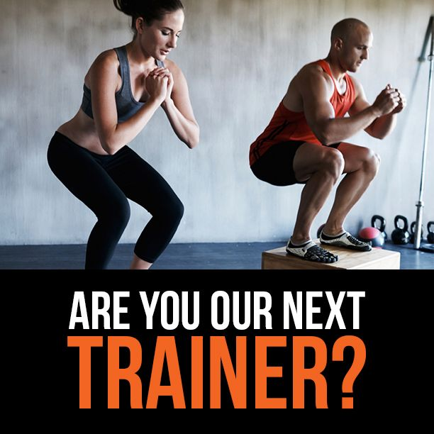 H4L is seeking a motivated and experienced Group Fitness Instructor to join our kick ass team. Are you passionate about helping people? Then these casual hours and working by Shelly Beach should also impress. It would help if you have a tow bar and some towing experience. Lets chat today, email or call Laura 0458 488 549 laura@h4l.com.au