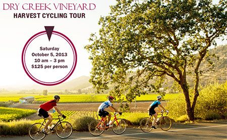 October 5, 2013 - Dry Creek Vineyard Harvest Cycling Tour. #sonomaevent #drycreekvineyard #cycling #sonomawinecountry