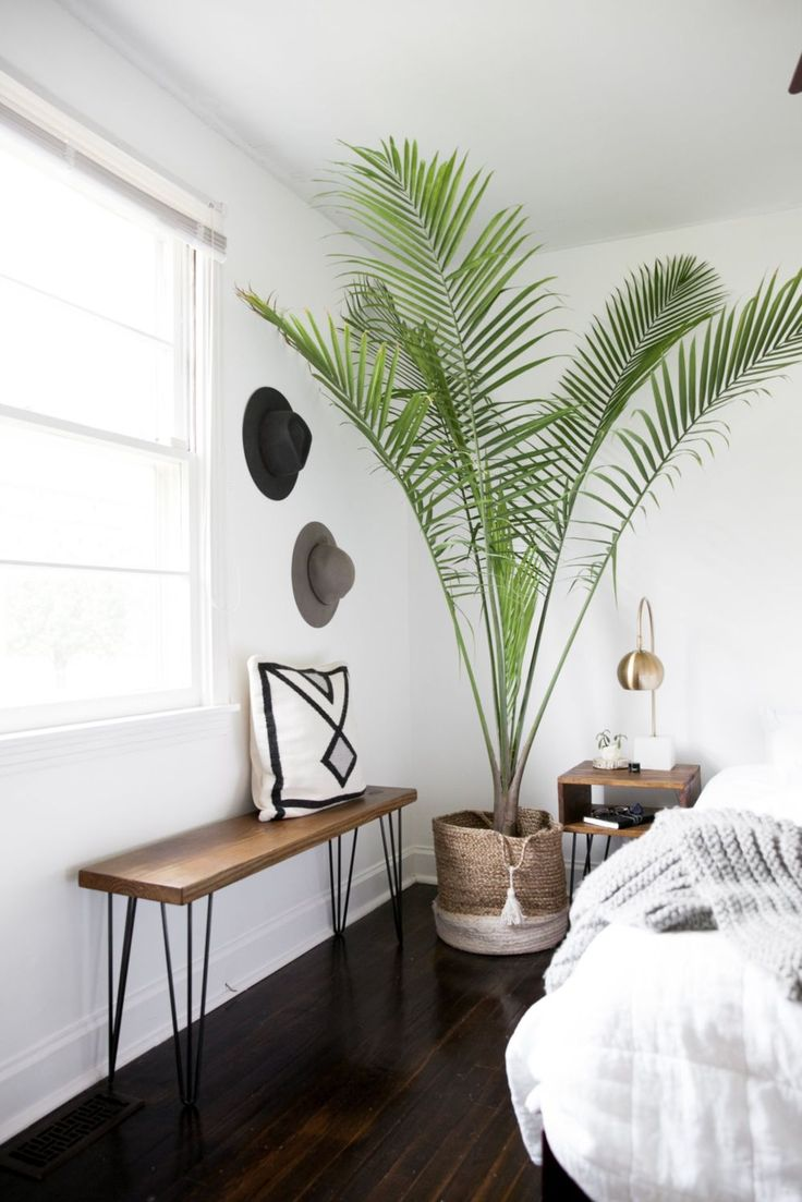 best 25+ tropical bedroom benches ideas on pinterest | tropical