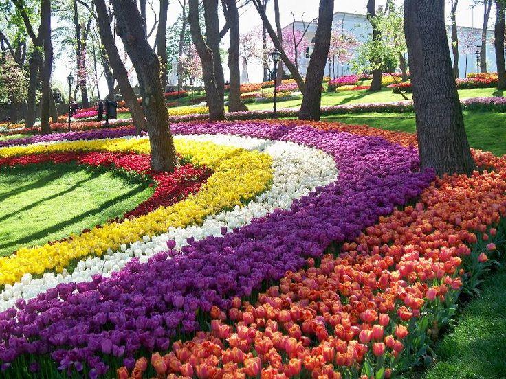 Щороку гостями Фестивалю тюльпанів у Стамбулі (Istanbul Lale Festivali) стають тисячі туристів з усього світу. Місто в цей час перетворюється на яскраве квіткове диво і виглядає просто неперевершено.