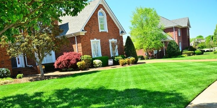 10 Lawn Care Tips to Add Curb Appeal