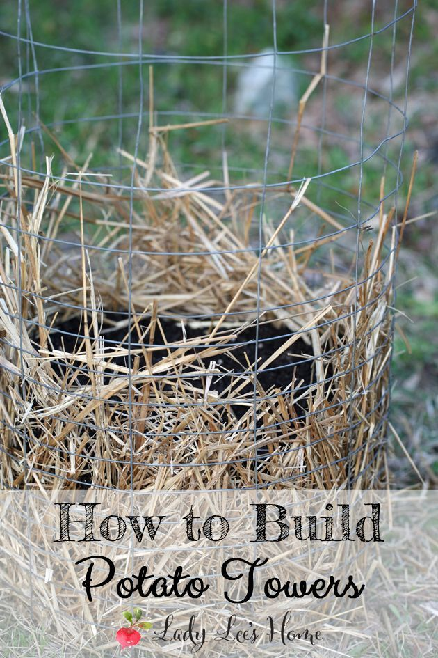 Here is how to easily make your own potato towers. Growing potatoes in towers will save a lot of room in your garden, and they are easy to build and maintain. #LadyLee'sHome