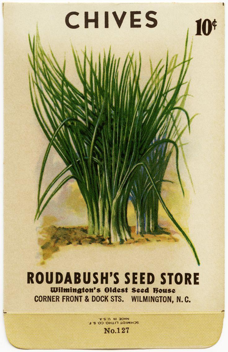 Old Design Shop ~ free digital image: vintage chives seed packet