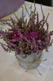 Røsslyng//Heather - Norway's national flower