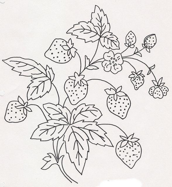 Strawberries by jeninemd, via Flickr