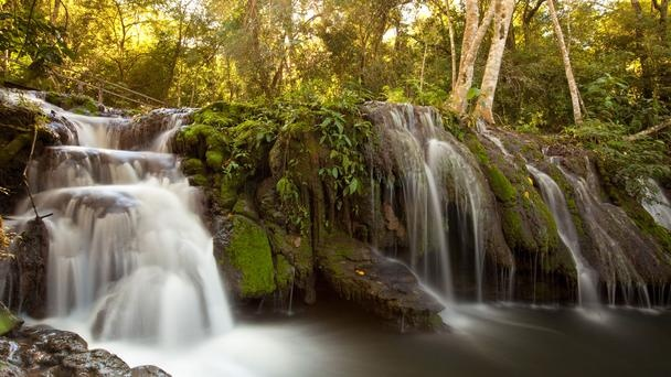 Surrounding Estancia Mimosa, a network of sun-dappled trails and wooden walkways lead to waterfalls along the Rio Mimoso by Bonito, Brazil. (photo by Daniel Allen for the BBC)