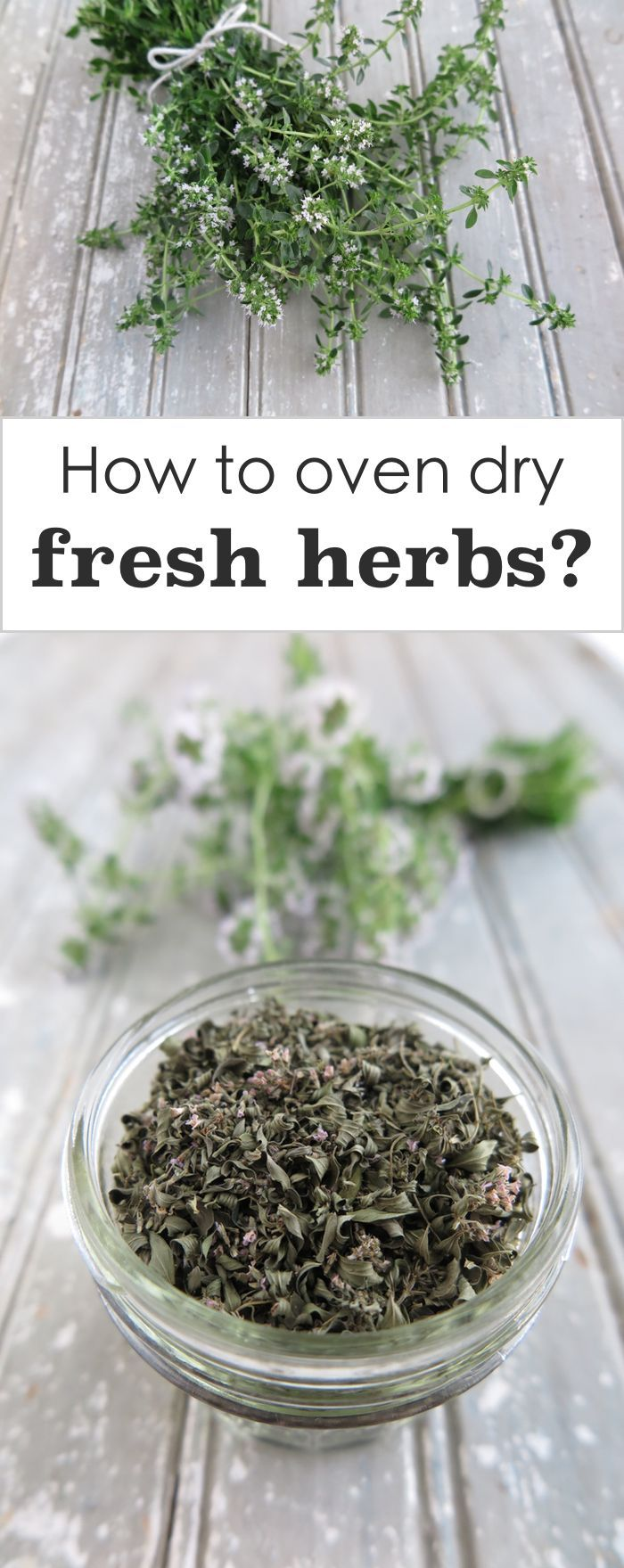 | How to Oven Dry Fresh Herbs | http://asquirrelinthekitchen.com