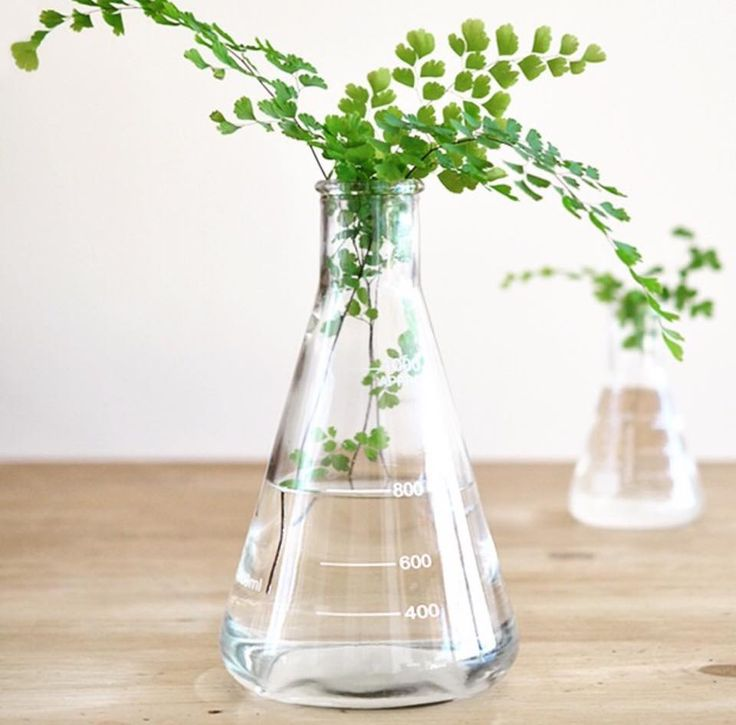 Conical Flask RRP $4.00 Top 20 Homewares At Kmart by Oh So Busy Mum
