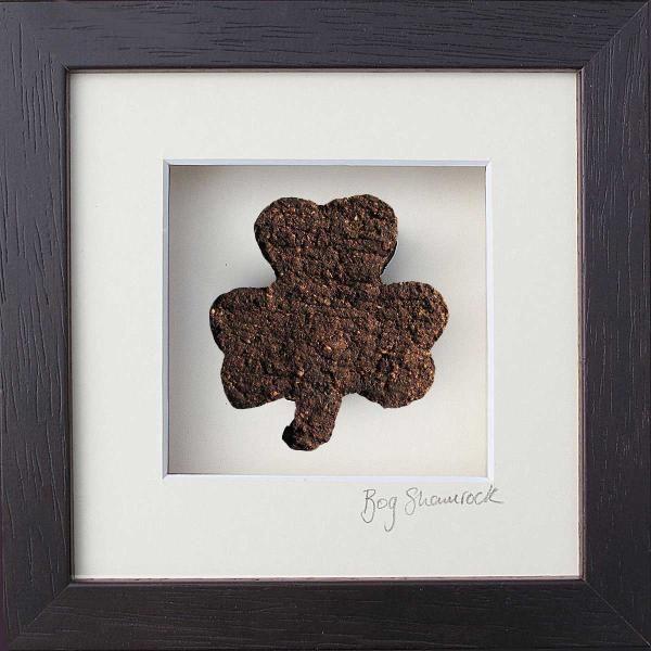 Bog Buddies - Shamrock - Irish Gift