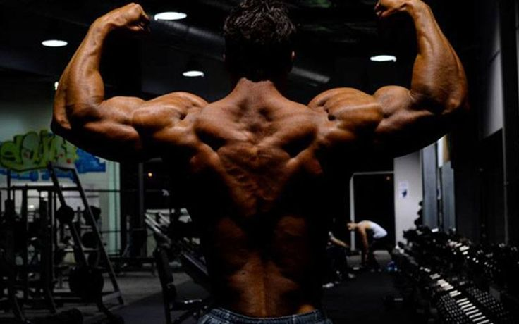The Best Back Workout For Mass And Definition  An Intense Workout To Build Width And Thickness Of The Back