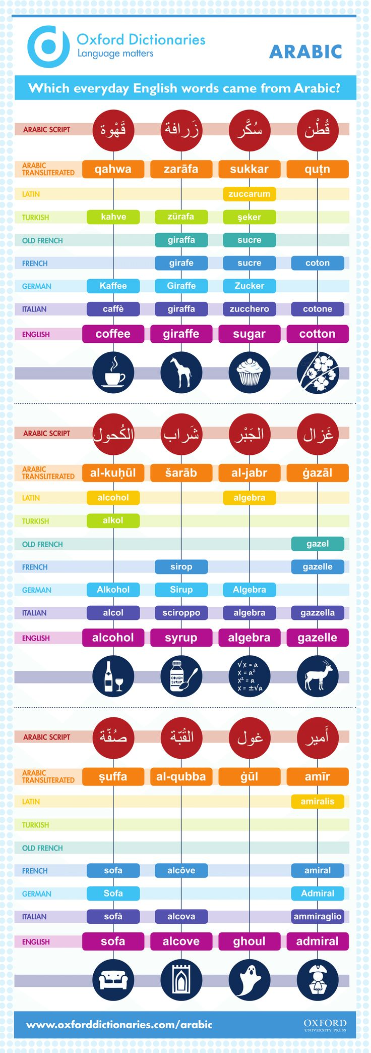 Which everyday English words came from Arabic? Infographic.