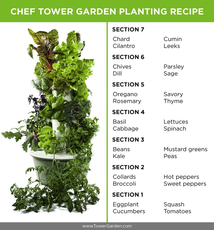 28 Plants to Grow for a Chef Tower Garden