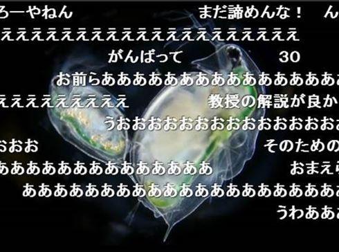 """「カイジ」の""""鉄骨渡り""""に「VRスカイダイビング」―― 「ニコニコ超会議2016」新企画が次々明らかに"""