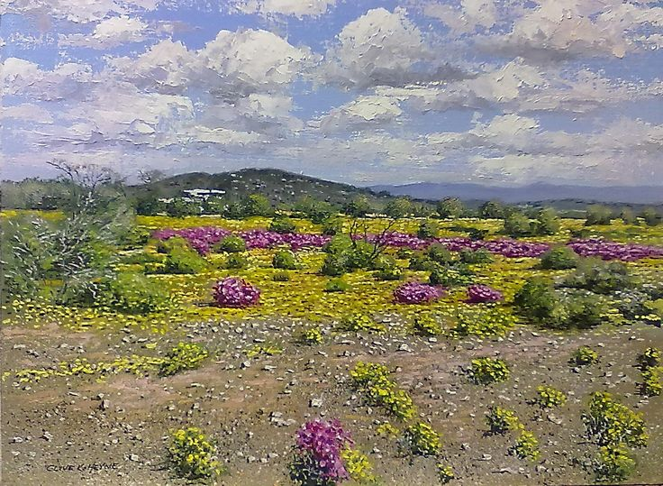 KAROO FLOWERS IN PRINCE ALBERT 400 X 600 mm ( 16 x 24 inches) unframed - SOLD