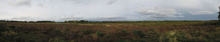 """Panorama of the Battle of Culloden - Battle of Culloden - The total of Jacobite casualties during the battle has been estimated at about 1,500–2,000 killed or wounded.[2][3] Cumberland's official list of prisoners taken includes 154 Jacobites and 222 """"French"""" prisoners (men from the 'foreign units' in the French service). Added to the official list of those apprehended were 172 of the Earl of Cromartie's men, captured after a brief engagement the day before near Littleferry. In striking…"""