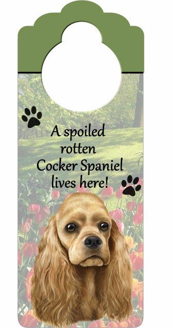 59 Best Images About Cocker Spaniel Pics And Quotes On