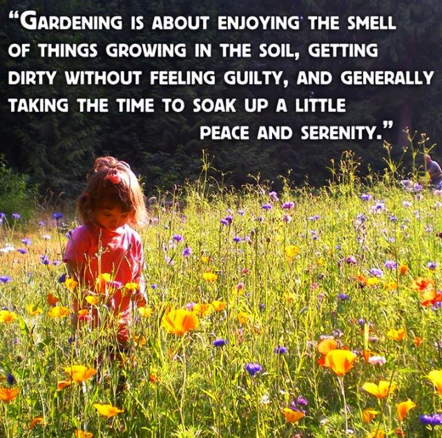 Landscaping And Gardening Quotes. QuotesGram